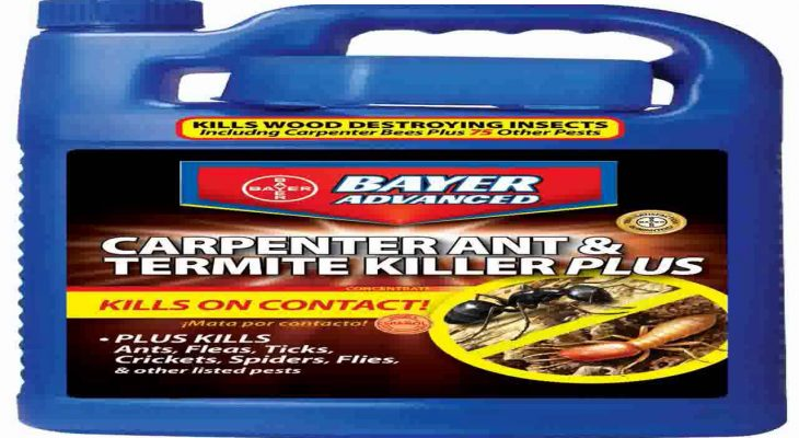 Termite Killer Products Which Kill Termites