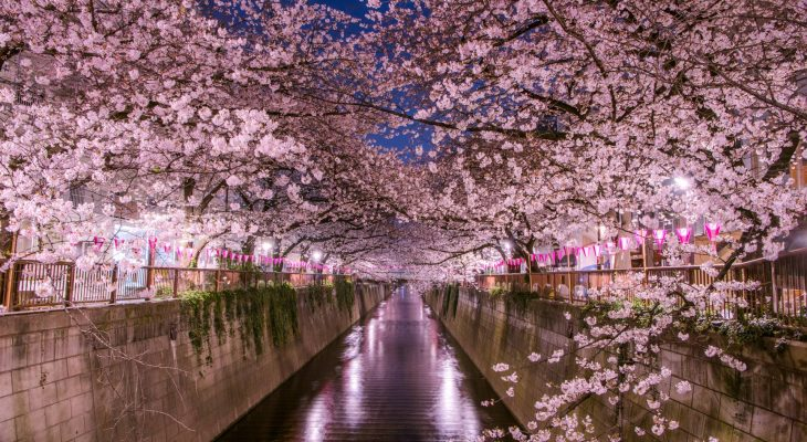 Best Areas In Tokyo For 2020